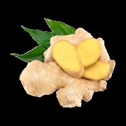 Ekolibi - Ginger