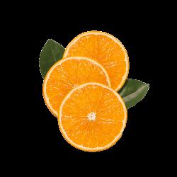 Ekolibi - Orange